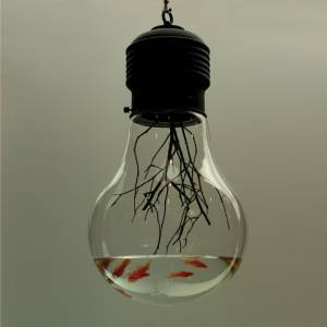 Light bulb fish tank, by Kim MyeongBeom